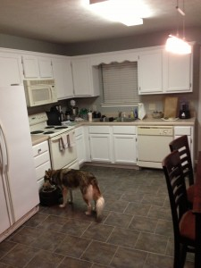 After cabinets - before countertops
